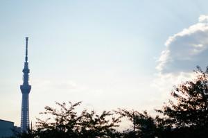 空が素敵な…